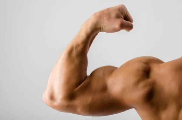 biceps-icatch